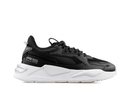 Rs-Z Reflective Wn S